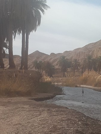 Kerman Province, Ιράν: Keshit canyon is one of the wonderful place in the kerman.almost neare hottest place in the world , the water is sweet and drinkable and in