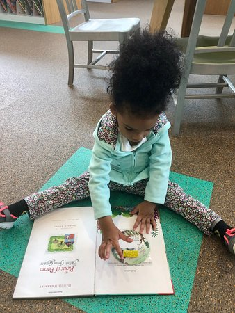 Robinson-Westchase Neighborhood Librarary: Had a learning blast at the Library!!