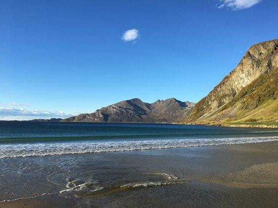 Grotfjord