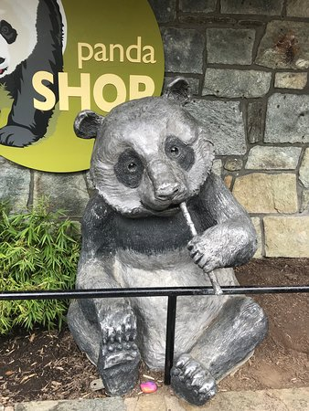 Panda Grill at Panda Plaza Food Court, Washington DC