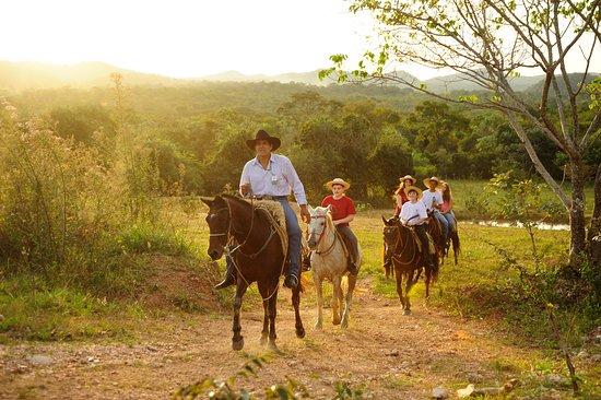 Estancia Mimosa Ecoturismo: Passeio a cavalo na Estância Mimosa! Percorra os campos da região e fique em sintonia com a natureza. Foto: Beto Nascimento