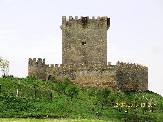 Tiedra, Spain: Замок Тиедра