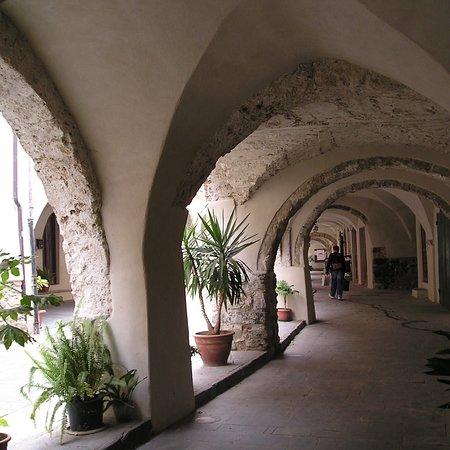 Zuccarello Photo
