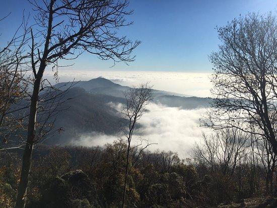 Cicli Stefanelli: Passo Roccolo e Cima Venda in inverno