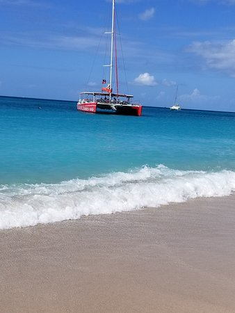 Tropical Adventures - Mystic Catamaran (St  John's) - 2019 Book in