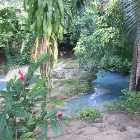 Mammee Bay, Jamaica: Blue hole Water Falls.