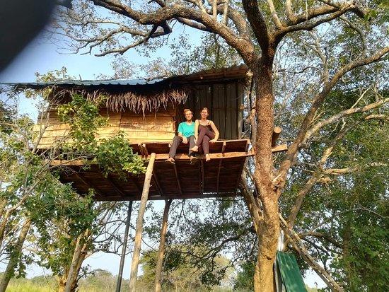 Habarana Eco Treehouse