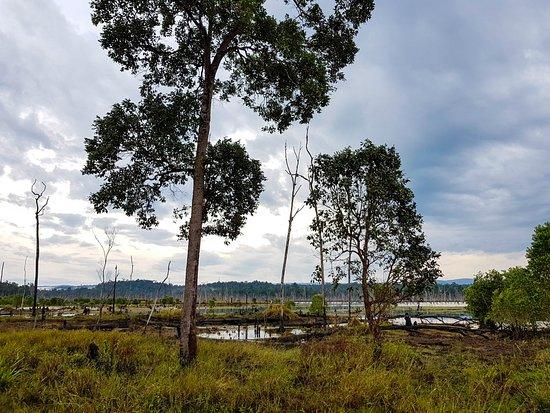 Mondulkiri Province, Kambodscha: Go off the beaten path in Cambodia!