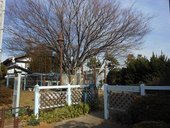 Washin Sakagami Park