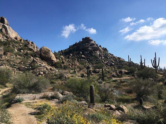 Incontri Servizi Scottsdale AZ