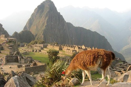 7-Day Lima and Cusco Tour with...