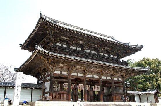 Tour dei giardini giapponesi con