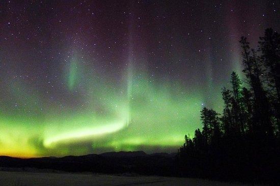 4-Day Yukon Aurora Viewing Tour