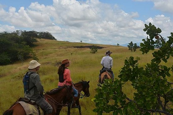 Lethemからの7日間のガイアナ野生の牧場の冒険