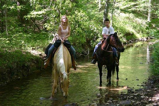 Twee uur paardrijden in Marmaris