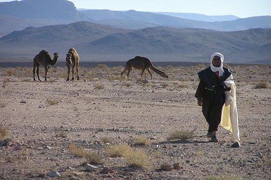 Excursion privée de 2 nuits au désert...