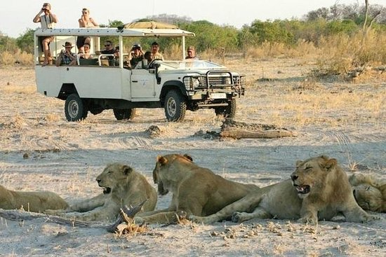 2-Day Chobe National Park Camping...