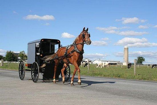 Experiencia Amish de 4 días de New...