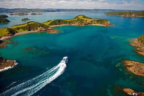 从奥克兰出发的3天海湾群岛之旅包括怀唐伊和雷因加角