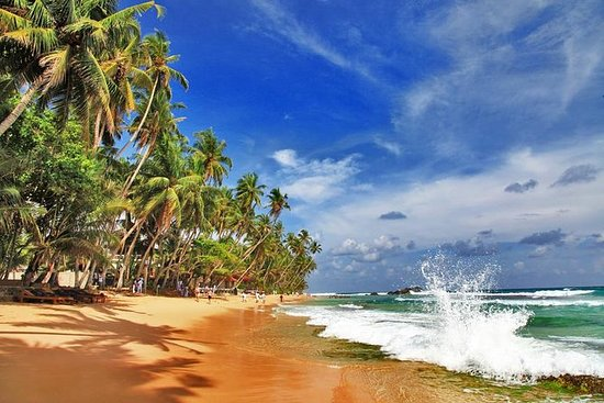 7-Night Private Luxury Sri Lanka Tour