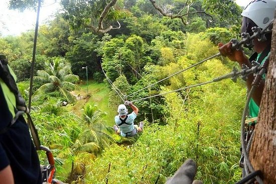 Trinidad Zipline Abenteuer