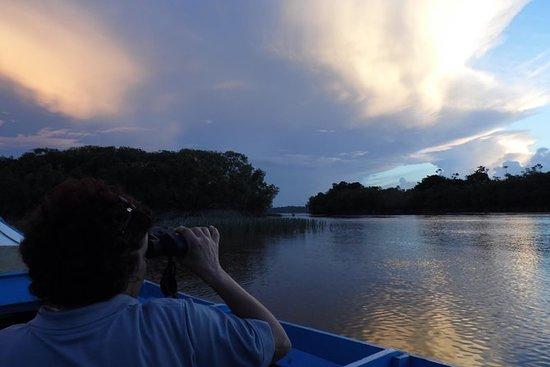 5 Day Guyana Wildlife And Nature Eco