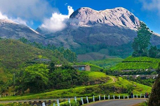 South India Tour to Kerala for 06 Days