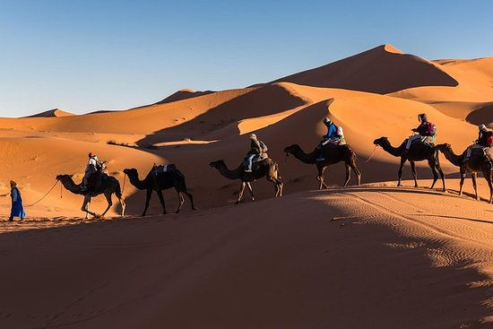 Erg Chigaga Desert Experience 3