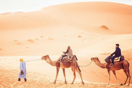 Excursion de 2 jours à dos de chameau...
