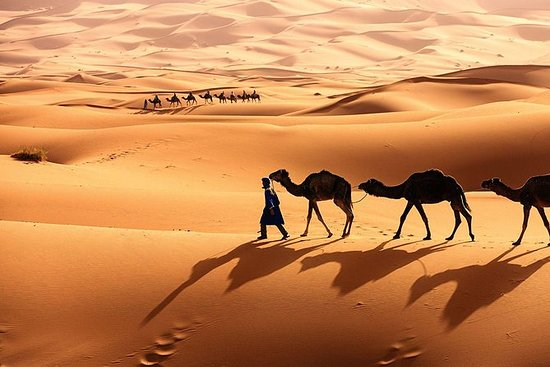 Tour del deserto da Marrakech a Zagora
