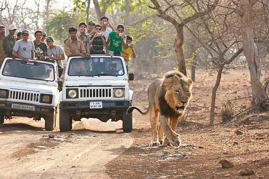 Safari da vida selvagem no Parque...
