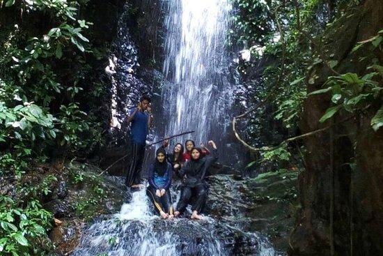 Tour 2D1N Foresta pluviale di Taman