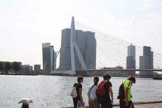 鹿特丹私人文化徒步之旅