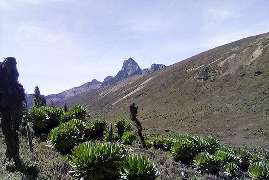 Mount Kenia Trekking durch...