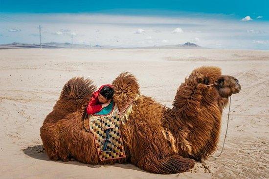 Mongolia in 3 giorni