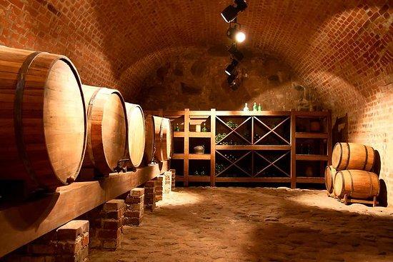 Ruta del Vino y el Pisco de 2 días en...