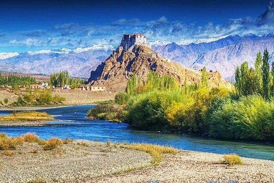 Exotisk Leh & Ladakh med Leh, Pangong ...