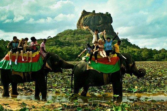 Discovery Tour dello Sri Lanka