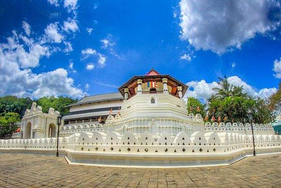 Hoogtepunten van Kandy en Nuwara ...
