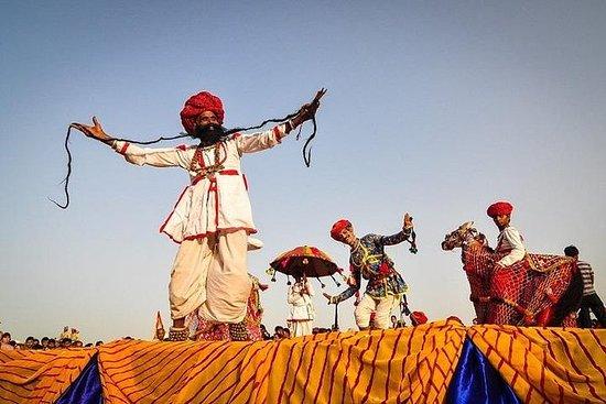 Levende Rajasthan med Pushkar Fair