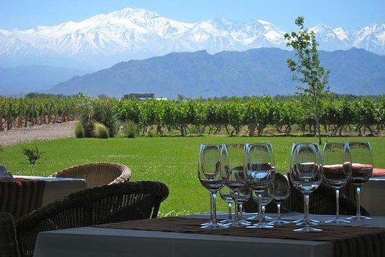 7-tägige Tour durch Mendoza und...