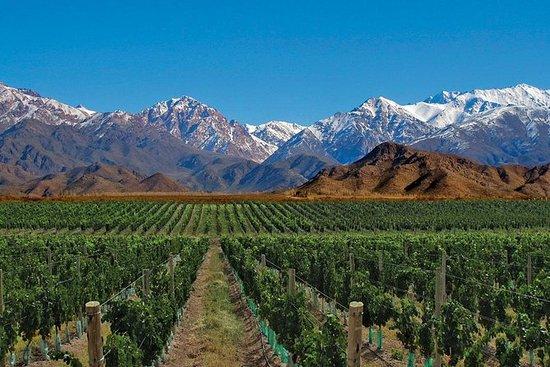 7-Day Mendoza & Santiago de Chile...
