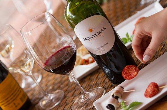 Excursão pelos vinhos e sabores de...