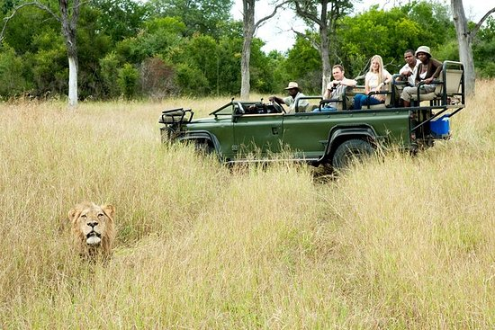 Nottens Bush Camp 4days Safari