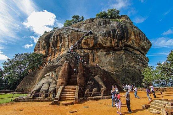 4 dager tur til Kandy, Nuwara Eliya...