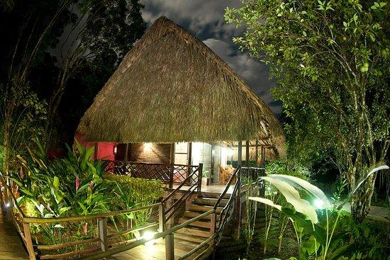 Guacamayas Lodge和Montes...