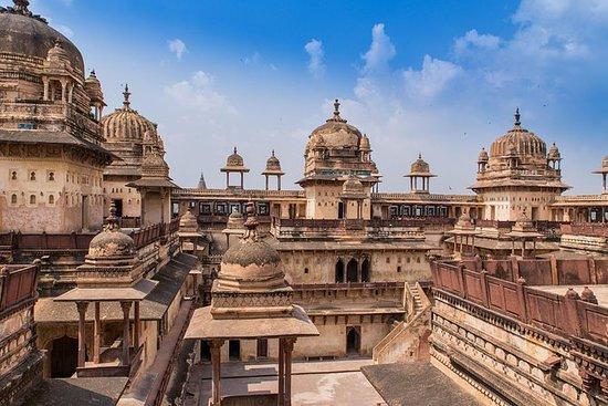 从德里出发3天游览Orchha和Khajuraho