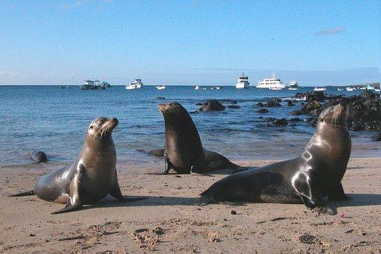 9 Day Galapagos Island Classic - 7...