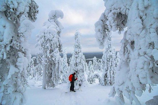7-dagers beste vinteraktiviteter i...