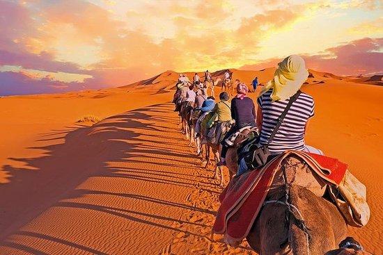 Pernottamento Camel Trekking nel